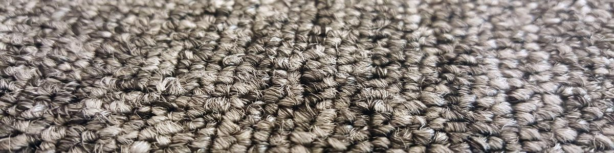 Detroit-mi_carpet-water-damage-odor-removal-restoration